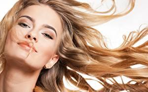 Bilder Model Hübsch Make Up Haar Blick Weißer hintergrund Mädchens