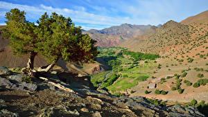 Bilder Marokko Gebirge Stein Bäume Atlas Mountains