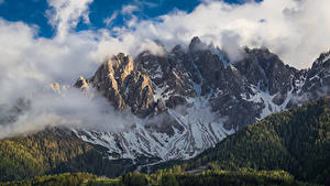 Fotos Berg Wälder Italien Wolke San Candido, Dolomites