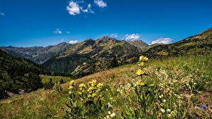 Hintergrundbilder Berg Grünland Himmel Andorra Gras Ordino, Pyrenees