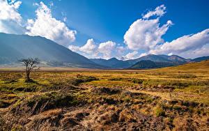 Bilder Gebirge Grünland Himmel Ein Tal Wolke Gras Gangteng Valley, Bhutan