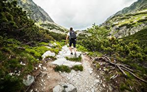 Fotos Berg Mann Steine Weg Hinten Rucksack Kletterer