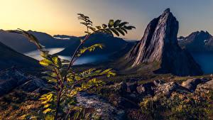 Fotos Berg Norwegen Ast Canyons Felsen Segla, Troms