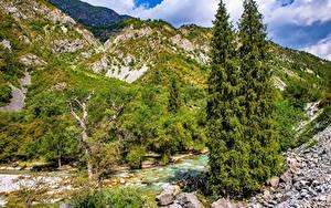 Bilder Gebirge Flusse Steine Bäume Kara-Kamysh, Kyrgyzstan