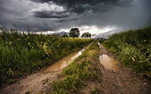 Fotos Gebirge Wege Felder Gewitterwolke Gras Pfütze