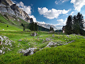 Fotos Gebirge Landschaftsfotografie Alpen Gras