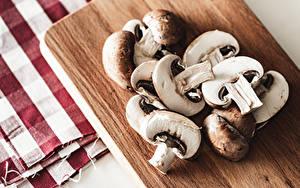 Fotos Pilze Zucht-Champignon Schneidebrett Geschnitten das Essen