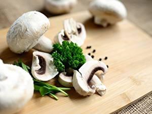 Bilder Pilze Zucht-Champignon Schneidebrett Geschnittenes Bokeh Lebensmittel