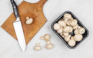 Fotos Pilze Messer Zucht-Champignon Grauer Hintergrund Schneidebrett Lebensmittel