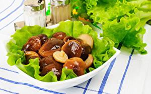 Hintergrundbilder Pilze Gemüse Teller Lebensmittel