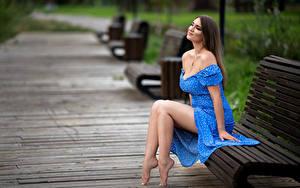 Fotos Bank (Möbel) Sitzt Lächeln Kleid Bein Bokeh Model Nady Mädchens
