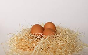 Desktop hintergrundbilder Nest Eier Drei 3 Grauer Hintergrund