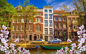 Fotos Niederlande Amsterdam Haus Schiffsanleger Blühende Bäume Ast Städte