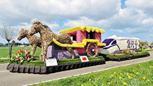Fotos Niederlande Pferde Design Kutsche Lisse Natur