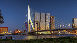 Pictures Netherlands Rotterdam Houses Bridges Cities