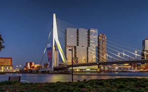 Pictures Netherlands Rotterdam Houses Bridges Cities