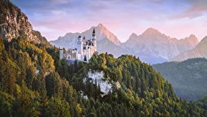 Fotos Schloss Neuschwanstein Gebirge Wald Burg Deutschland Bayern Natur