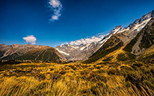 Bilder Neuseeland Park Berg Mount Cook National Park Natur