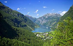 Fotos Norwegen Berg Wald Gebäude Bucht Laubmoose Geiranger Fjord
