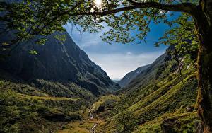 Hintergrundbilder Norwegen Gebirge Bäume Ast Sonne Ein Tal Hardanger