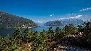 Hintergrundbilder Norwegen Gebirge Bäume Hardangerfjorden