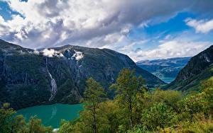 Fotos Norwegen Berg Parks Wolke Bäume Folgefonna National Park