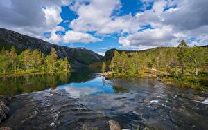 Bilder Norwegen Parks Flusse Berg Wolke Bäume Rago National Park
