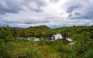 Bilder Norwegen Parks Bäume Wolke Sjunkhatten National Park