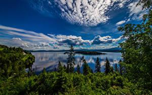 Fotos Norwegen Himmel Wolke Bäume Geiranger Natur