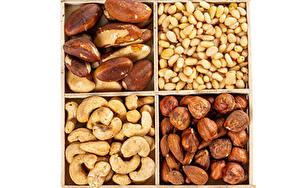 Bilder Nussfrüchte Haselnuss Weißer hintergrund das Essen