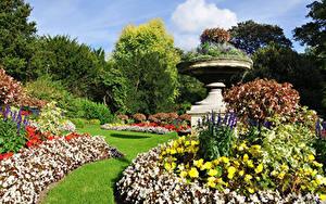 Bilder Park Design Gras Bäume