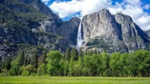 Bilder Park Wälder Gebirge Wasserfall Landschaftsfotografie USA Yosemite Gras Felsen Kalifornien