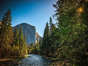 Fotos Parks Wald Flusse USA Gebirge Yosemite Kalifornien El Capitan