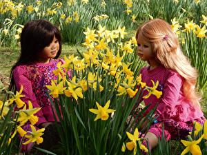 Fotos Park Frühling Narzissen 2 Puppe Kleine Mädchen Design Grugapark Essen Blumen