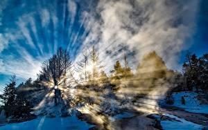 Hintergrundbilder Park Vereinigte Staaten Winter Yellowstone Schnee Bäume Lichtstrahl Nebel Natur