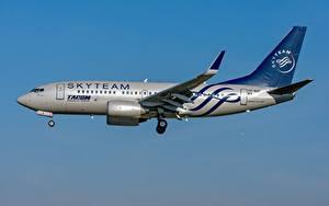 Bilder Flugzeuge Verkehrsflugzeug Boeing TAROM Romanian 737-700W