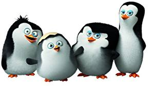 Fotos Pinguine Vier 4 Penguins of Madagascar 2014 Animationsfilm Tiere