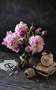 Hintergrundbilder Pfingstrosen Uhr Wecker Bretter Vase Knospe Rosa Farbe Bücher Blumen