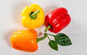 Bilder Peperone Hautnah Drei 3 Bunte das Essen