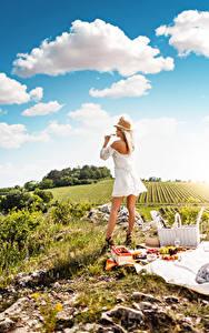 Fotos Picknick Gras Blondine Der Hut Kleid Wolke Weinglas Erholung Mädchens