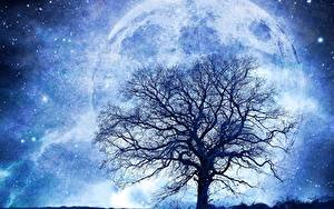 Wallpapers Planets Stars Trees Silhouette Branches Fantasy Space