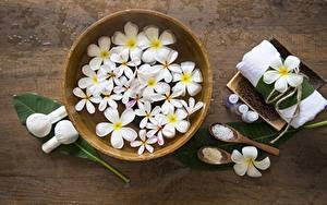 Photo Plumeria Bowl Spa Salt Flowers