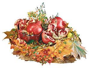 Fotos Granatapfel Weißer hintergrund Blatt Getreide Lebensmittel