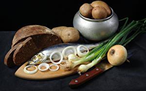 Fotos Kartoffel Brot Zwiebel Fische - Lebensmittel Schneidebrett