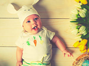 Fotos Kaninchen Ostern Bretter Baby Junge Starren Kinder