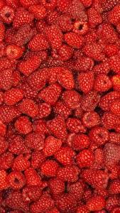 Fotos Himbeeren Textur Beere Viel Rot Lebensmittel
