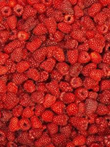 Fotos Himbeeren Textur Beere Viel Rot