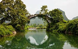 Picture Rivers Bridge Trees Arch Nature