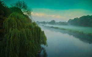 壁纸、、川、霧、木、漫画