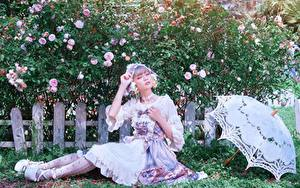 Fotos Rose Asiaten Gras Zaun Strauch Regenschirm Sitzend Hand Posiert junge Frauen